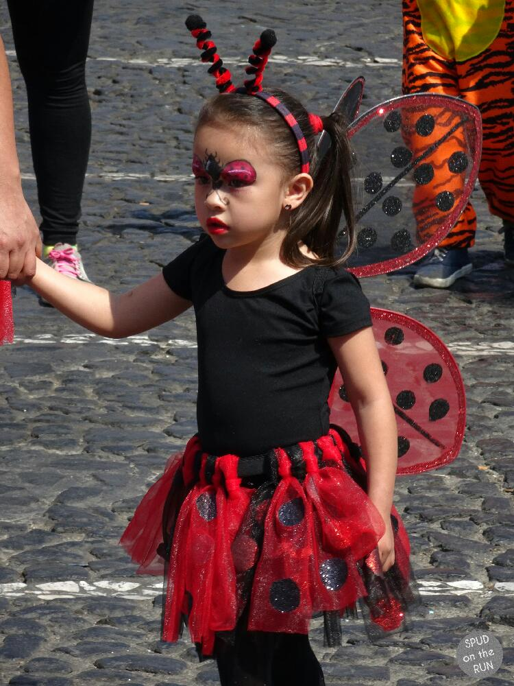 Ladybirds in Taxco parade for spring