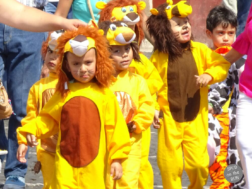 Start of Spring in Taxco - children as lions